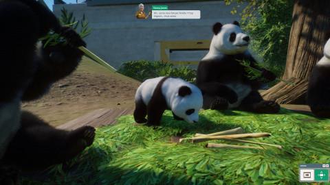 """Planet Zoo : le """"Zoo Tycoon"""" le plus complet sorti à ce jour"""