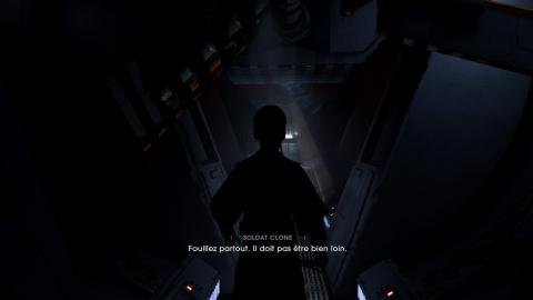 L'ombre du maître