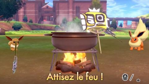 Pokémon Epée / Bouclier, Poké-Camping : les avantages à camper, le guide du parfait campeur