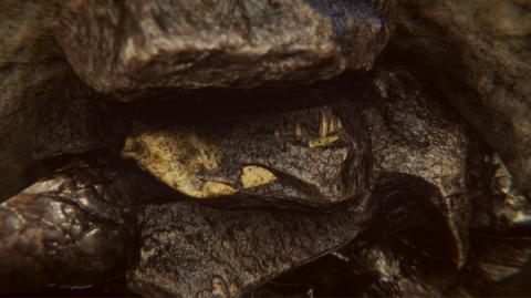 Pyramid Games annonce Dinosaur Fossil Hunter