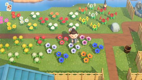 Animal Crossing New Horizons, les fleurs : variétés, prix, comment en prendre soin… tout ce qu'il faut savoir