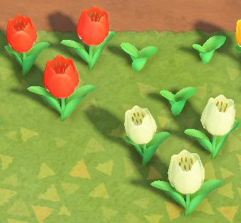 [MàJ] Animal Crossing New Horizons, fleurs hybrides, prolifération des fleurs : comment ça marche ?