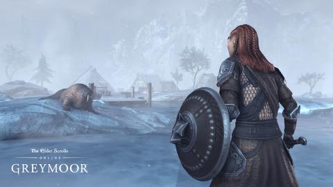 Coronavirus : The Elder Scrolls Online Greymoor accusera un léger retard