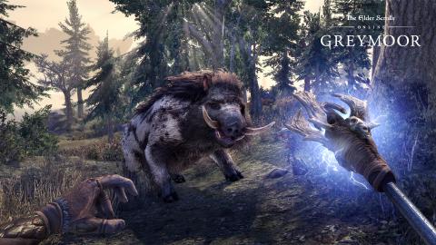 The Elder Scrolls Online : Greymoor - Les vampires débarquent en Bordeciel