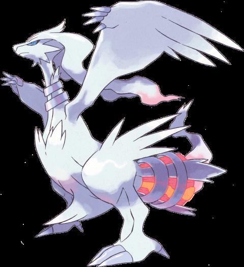 Pokémon GO, Reshiram, Zekrom et Kyurem : Que valent les légendaires de 5è génération ?