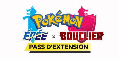Pokémon Épée / Bouclier : Les terres enneigées de la Couronne sur Switch