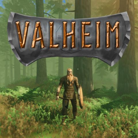 Valheim sur PC