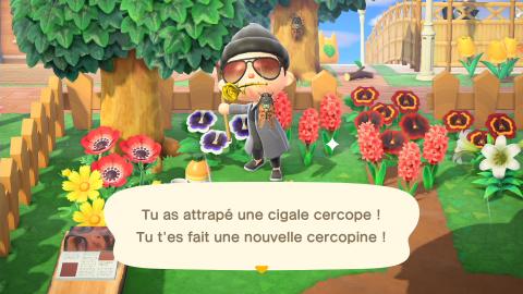 Animal Crossing New Horizons, changements de juillet : nouveaux insectes et poissons, notre guide