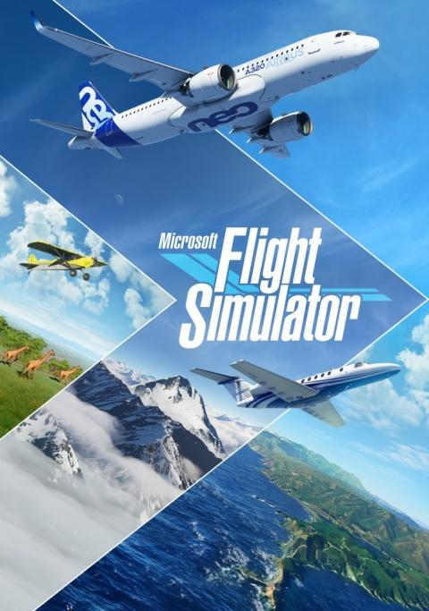 Microsoft Flight Simulator sur Xbox Series