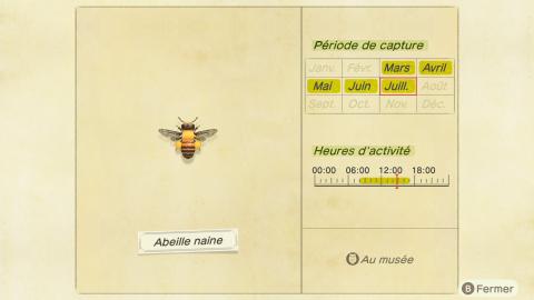Animal Crossing New Horizons, bébêtes de juillet : quelles espèces vont disparaître en août ?