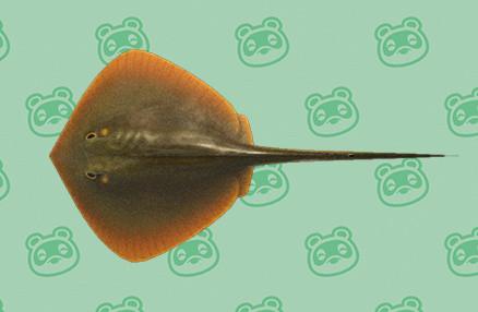 Animal Crossing New Horizons, changements d'août : nouveaux insectes, poissons et créatures marines, notre guide