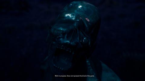 The Origin : Blind Maid - Un jeu d'horreur sur le folklore sud-américain pour 2021