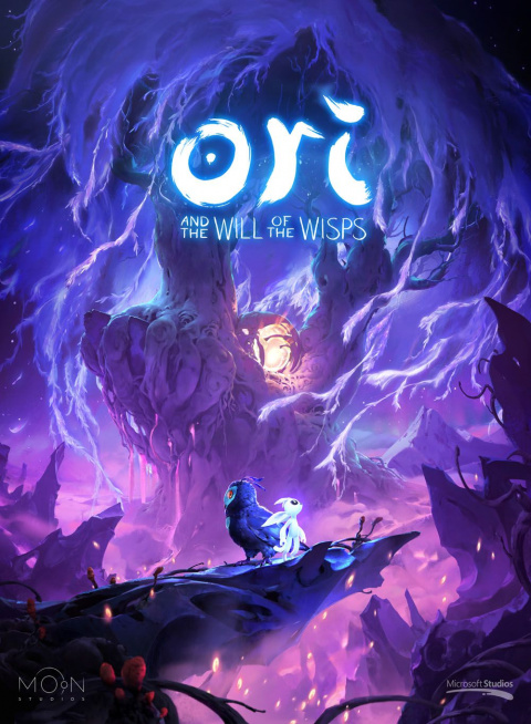 Ori and the Will of the Wisps sur Switch