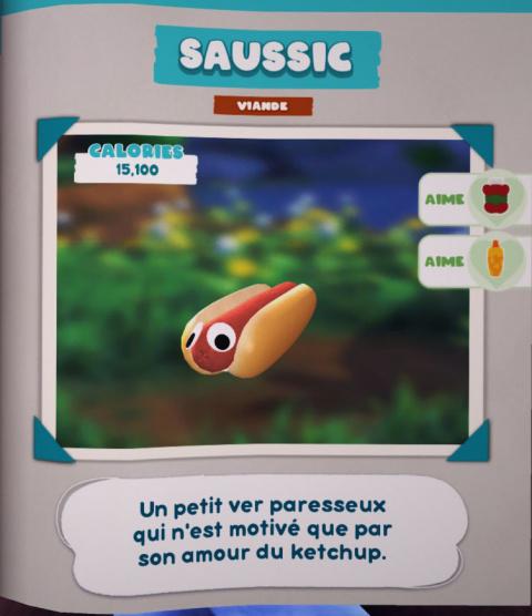 Saussic