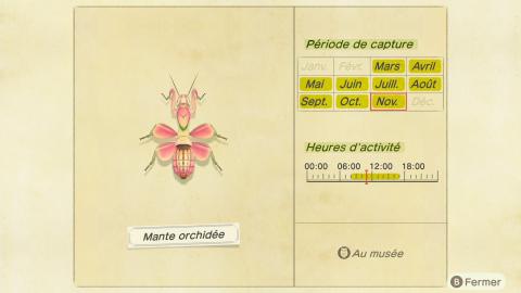 Animal Crossing New Horizons, bébêtes de mai : quelles espèces vont disparaître en juin ?