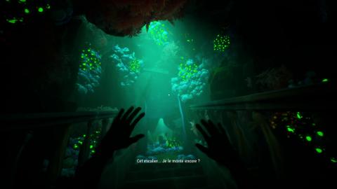 Call of the Sea : Un air de Firewatch avec des énigmes, l'étincelle en moins