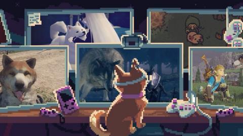 Can You Pet The Dog : Le compte mignon devenu outil marketing
