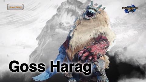 Monster Hunter Rise date sa démo et dévoile de nouvelles informations