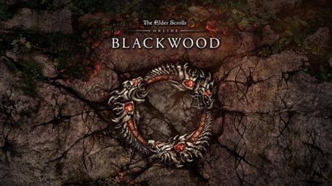 The Elder Scrolls Online : Blackwood sur Stadia