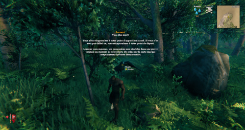 Valheim, guide to getting started: some tips to know