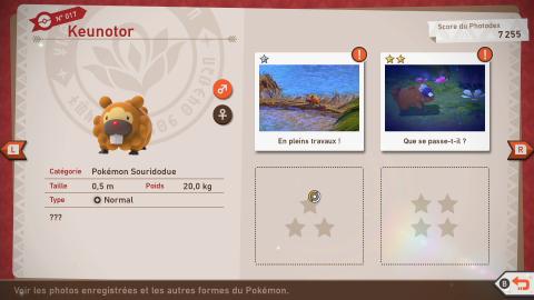 New Pokémon Snap : notre guide pour bien débuter