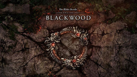 The Elder Scrolls Online : Blackwood sur PS5