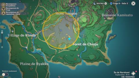 Genshin impact, la quête secondaire du rituel de purification du cerisier sacré (Arme 4* à la clé)