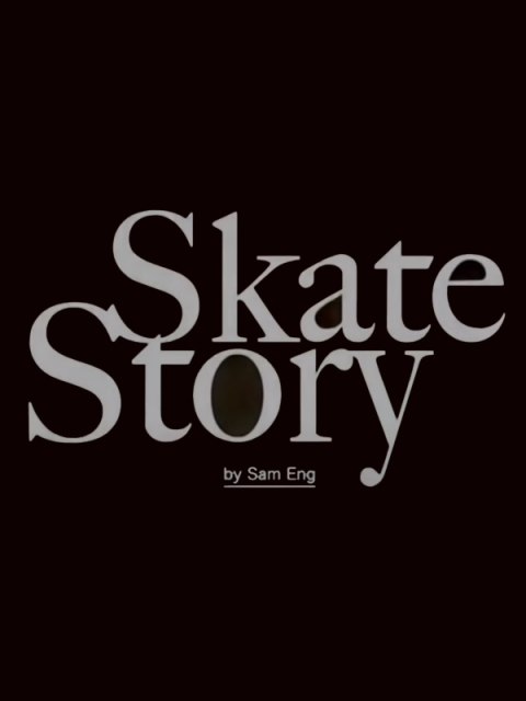 Skate Story sur PC