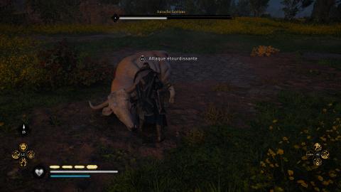 Bête légendaire : Auroch fantôme