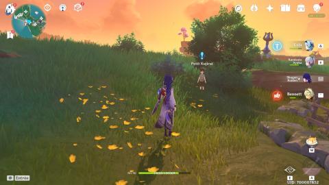 Genshin Impact, la quête du jeu de Temari : 8 coffres précieux à la clé !